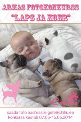 "Fotokonkurss ""Laps ja koer"""