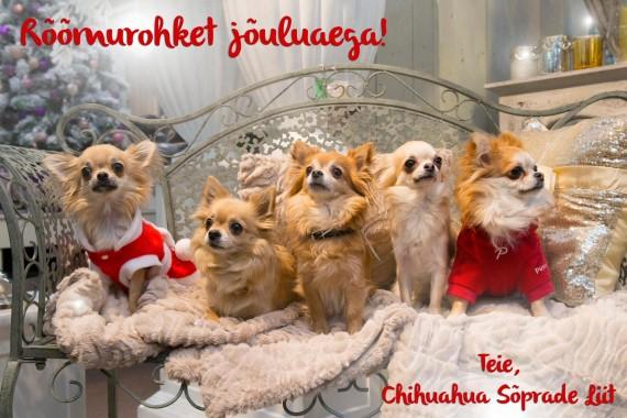 Häid jõule!