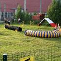 Koeraspordiklubi Koerus avas uue treeningplatsi